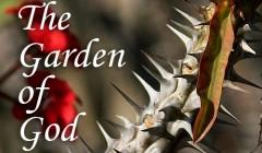 GarddenofGodimage_crop